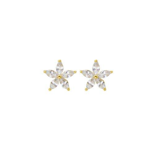 Sterling Silver CZ Star Studs (ST-1419)